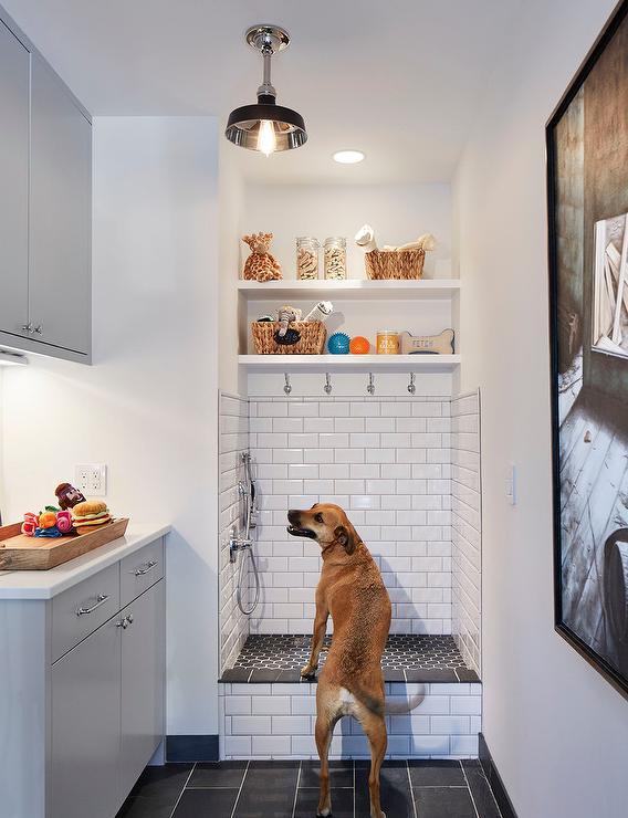 home Dog Spa