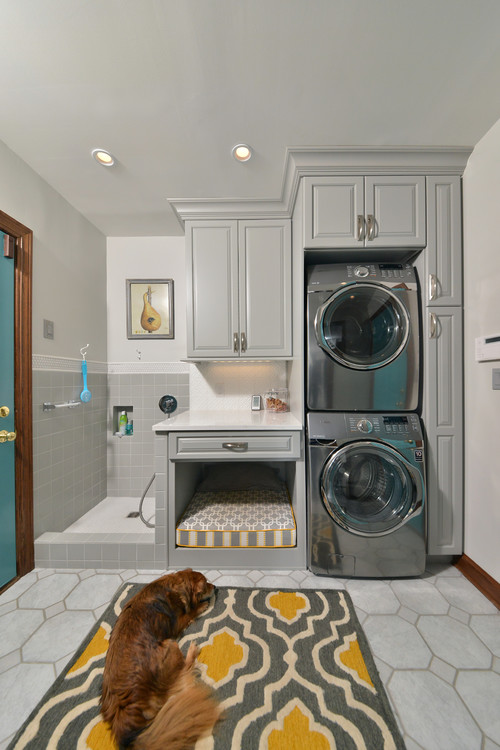 Home Dog Spa in Laundry room